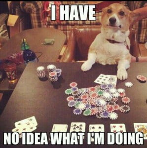 a dog sitting with chips and cards in front of him