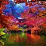 asian castle near a lake circled with red and green trees